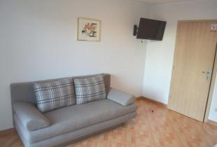Studio apartment Ivanka A1 for two persons